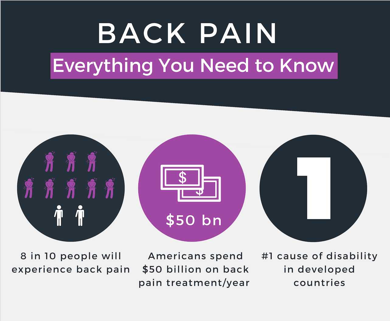 backpain-infographic-preview